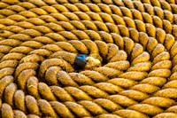 Ship's Rope Coil